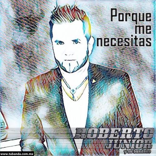 Roberto JR - Porque me necesitas